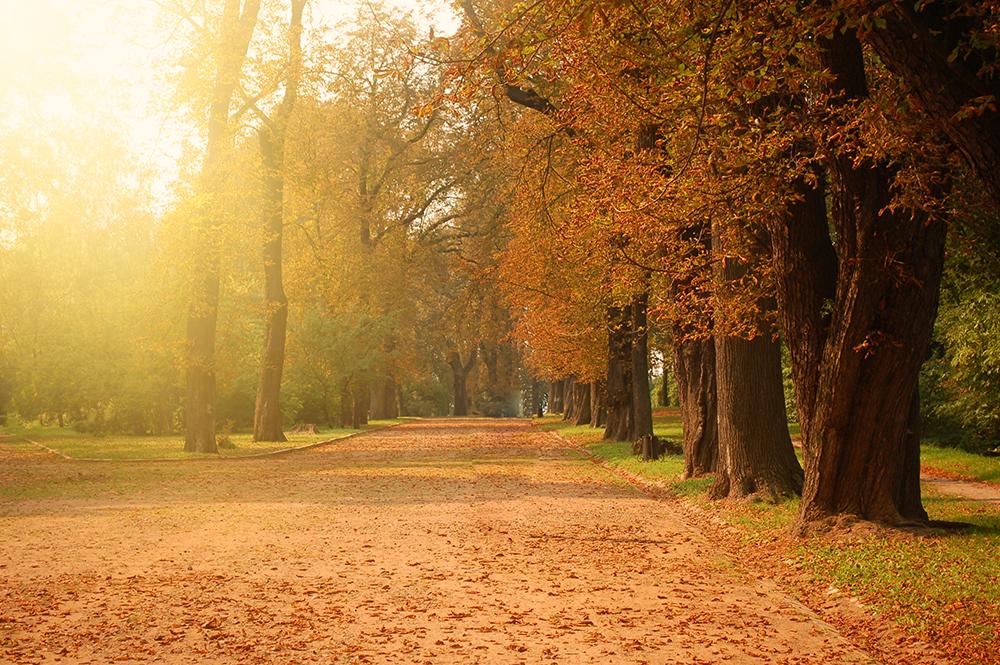 5 miejsc, które warto odwiedzić w sezonie jesienno-zimowym