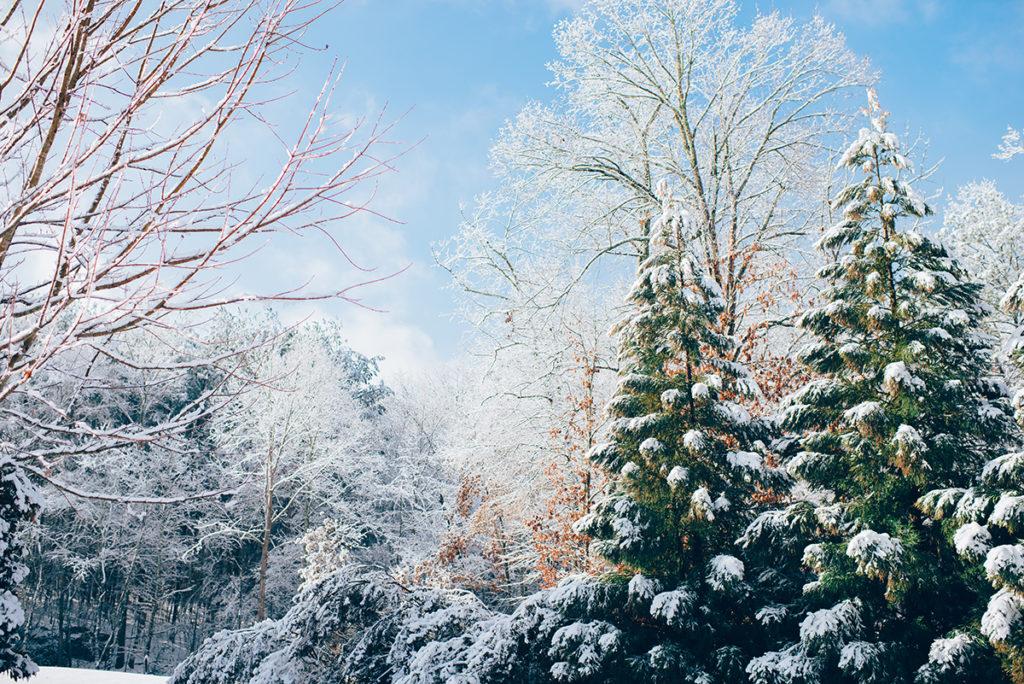 Sezon zimowy przed nami! Gdzie na narty?